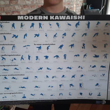 Judo dedemsvaart- Poster